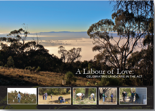 Labour of Love book cover